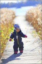 Lapsi pitelee heinää laiturilla