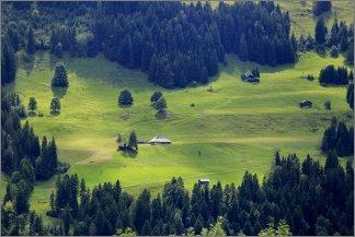 1764 - Paratiisiniitty Erlenbachissa